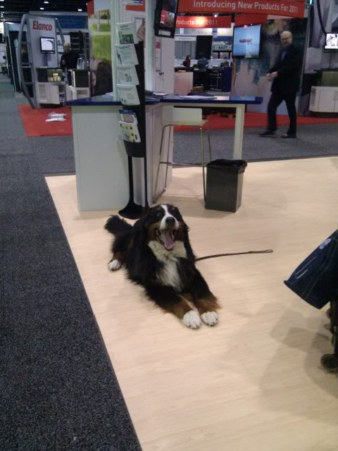 NAVC-2011-Best-dog-of-the-conference